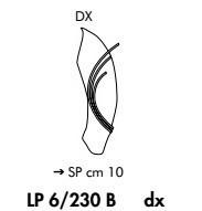 Sillux ROMA LP 6/250 B DX bursztynowy/miedziany Lampa Ścienna